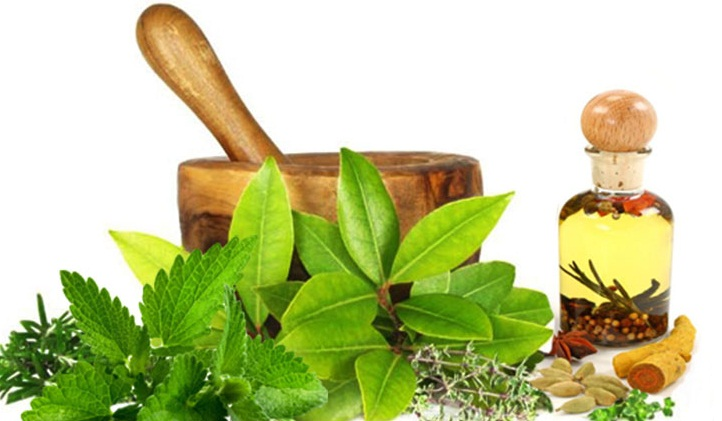 Herbal Cosmetics in India- A List of Top Go-Getters