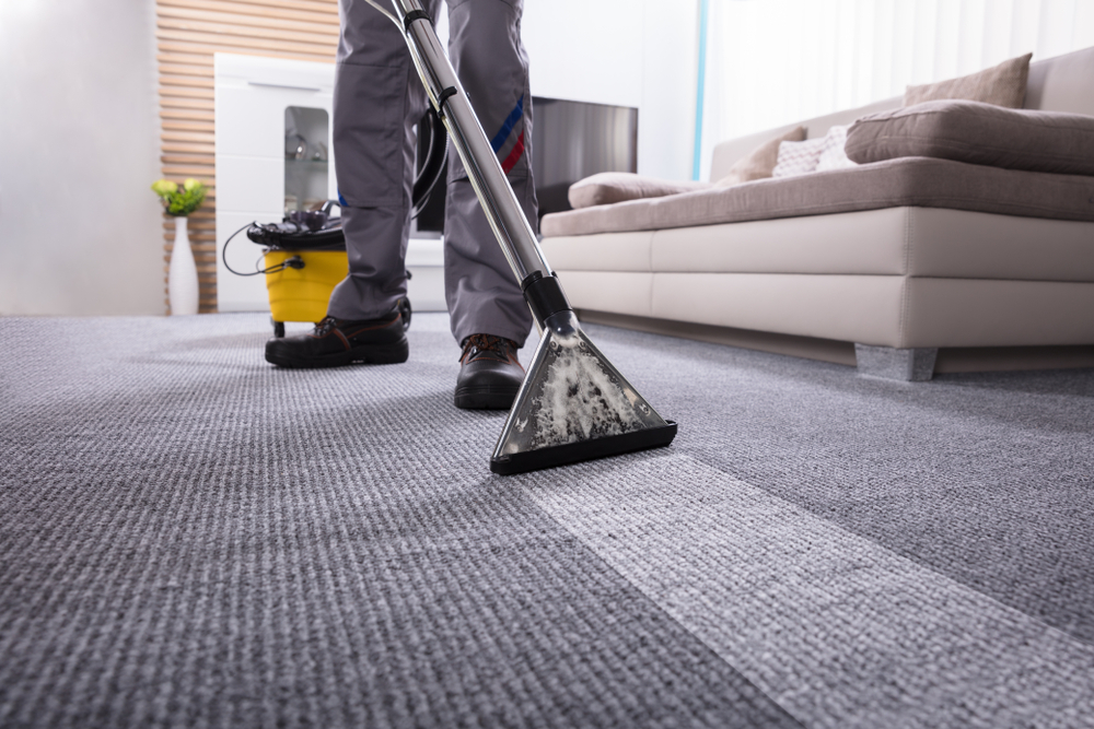 Tips To Keep Your Carpet Clean And Healthy with Carpet Cleaning Sydney